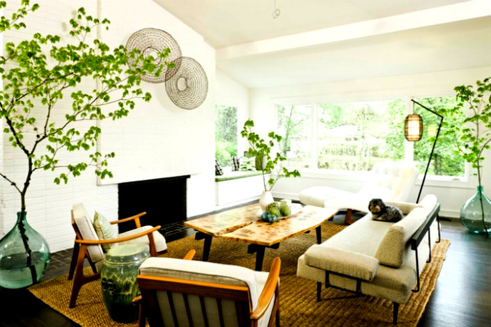 USE HOUSE PLANTS TO REFRESH YOUR INTERIORS   home inspiration ideas
