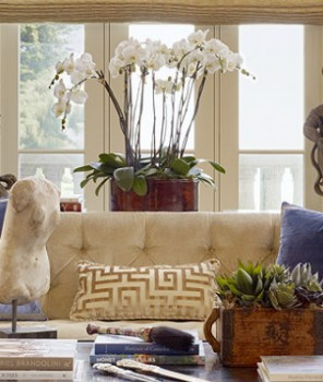 Best Texas Interior design styles - Lucas Eilers ideas